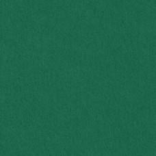 Бумага дизайнерская<br>COLORPLAN зеленый<br>270 г/м2