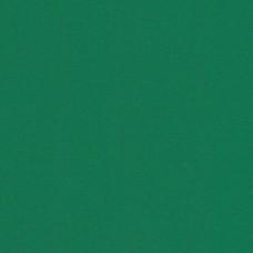 Бумага дизайнерская<br>PLIKE Green Зеленый<br>140 г/м2