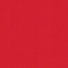 Бумага дизайнерская<br>PLIKE Red Красный<br>330 г/м2