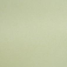 Бумага дизайнерская<br>ORIGINALS PISTACHIO ФИСТАШКА<br>300 г/м2