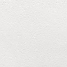 Бумага дизайнерская<br>KARTOPU WHITE БЕЛЫЙ<br>300 г/м2