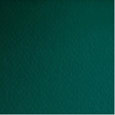 Бумага дизайнерская<br>PRISMA 1/S PINO ТЕМНО-ЗЕЛЕНЫЙ<br>220 г/м2