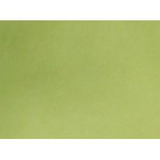 Переплетный материал DAINEL SG 122 мятный